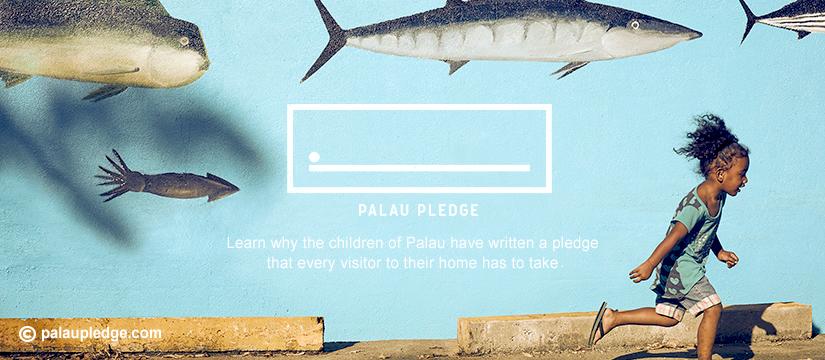 کمپین پیمان پالائو
